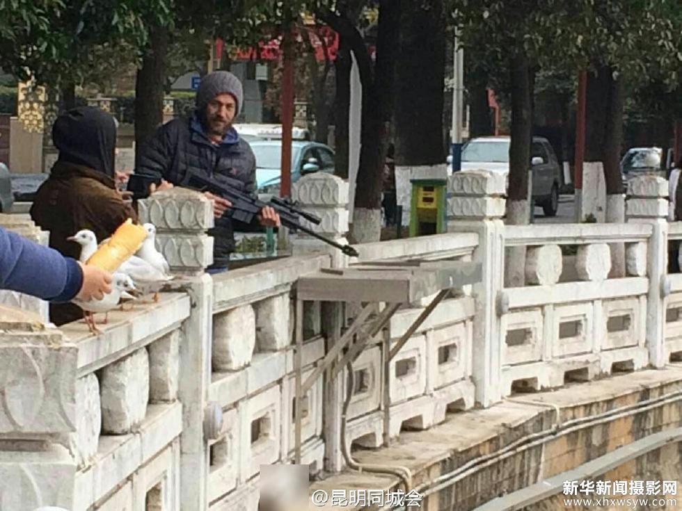网曝昆明翠湖老外持枪打红嘴鸥 - 网曝昆明翠湖